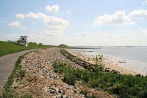 Rad- und Wanderweg entlang der Elbe